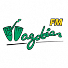 Radio Ads on Wazobia FM